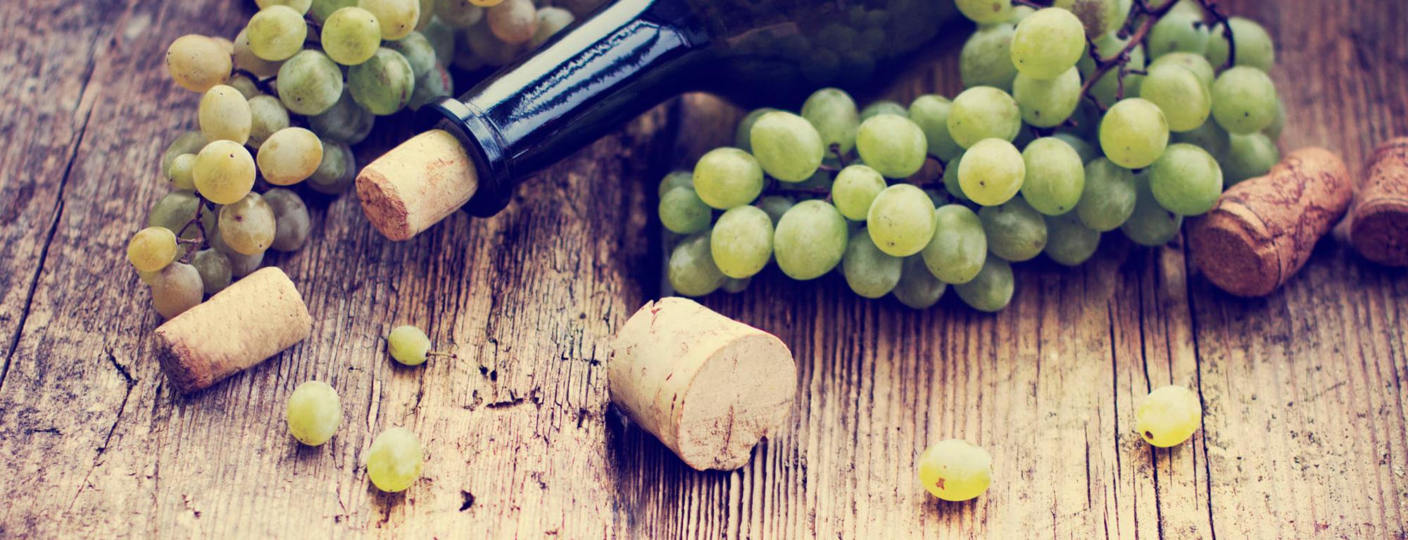 viinomi2